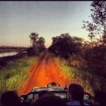 safari dudaburlamaqui